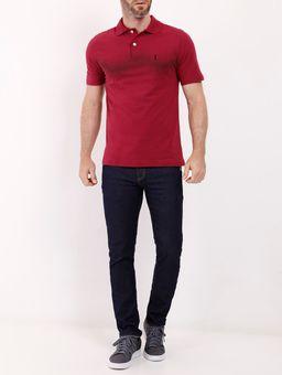 C-\Users\edicao5\Desktop\Produtos-Desktop\134518-camisa-polo-head-vermelho