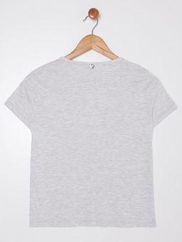134897-camiseta-juv-luneneder-hits-mescla-pompeia