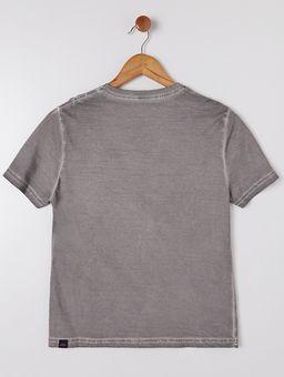 134870-camiseta-juv-hangar-33-cinza