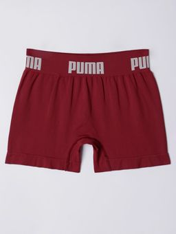 137648-cueca-adulto-puma-bordo
