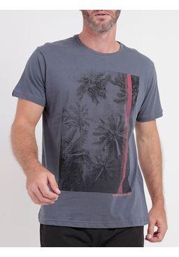 136995-camiseta-mc-adulto-dixie-grafite4