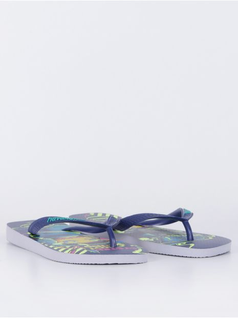 94435-chinelo-de-dedo-havaianas-cinza-gelo